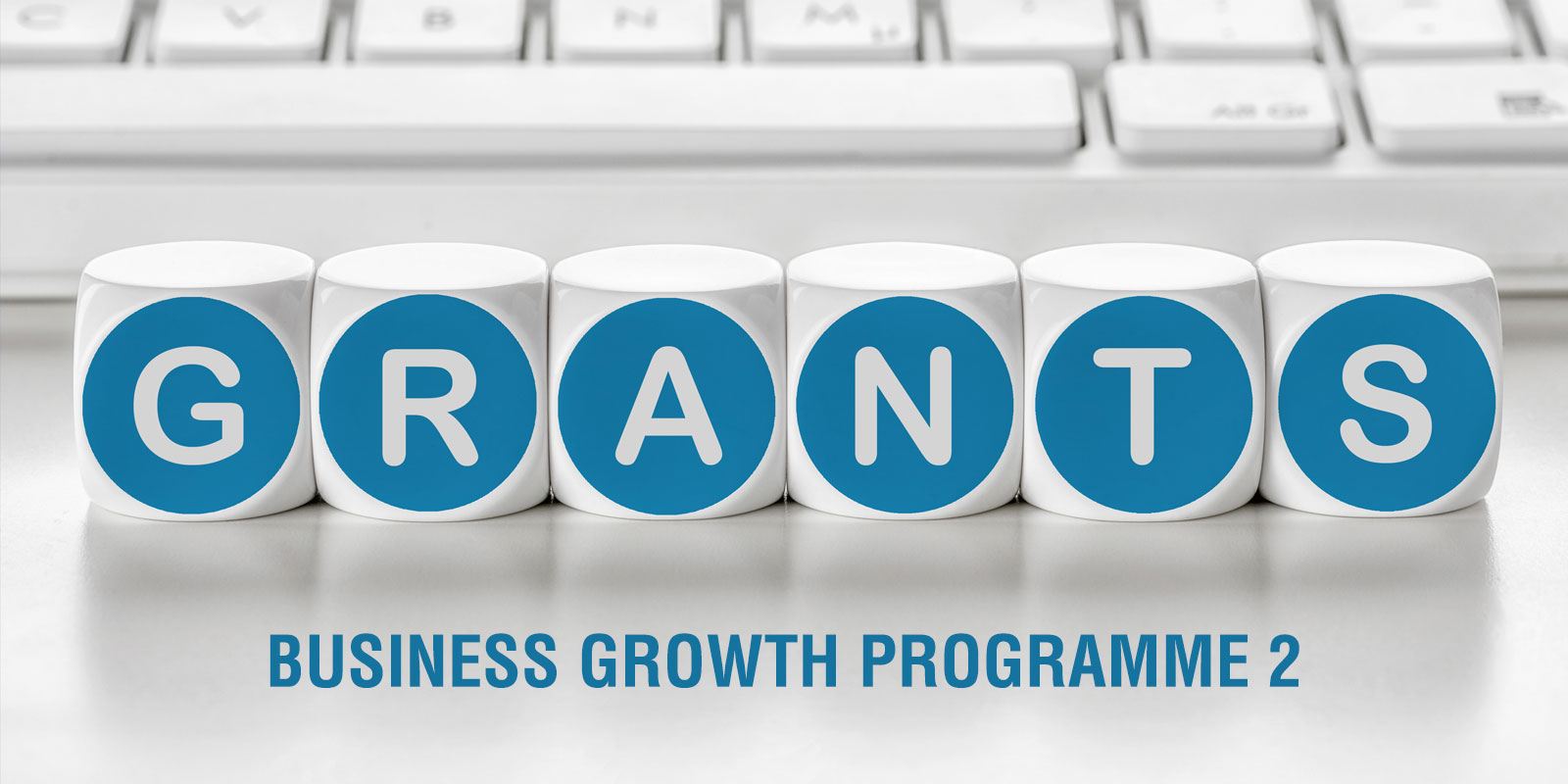 Business Growth Programme 2